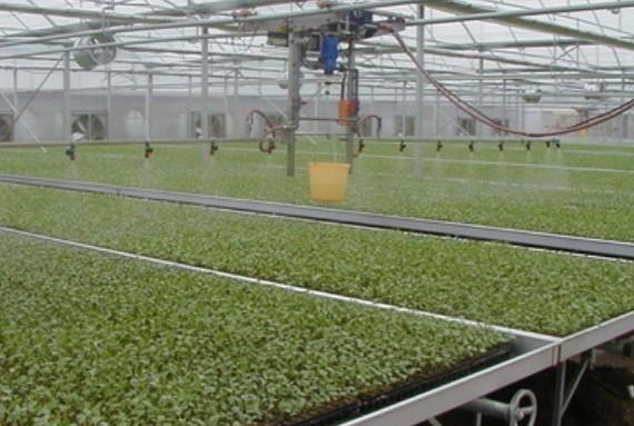 大棚机械化农业