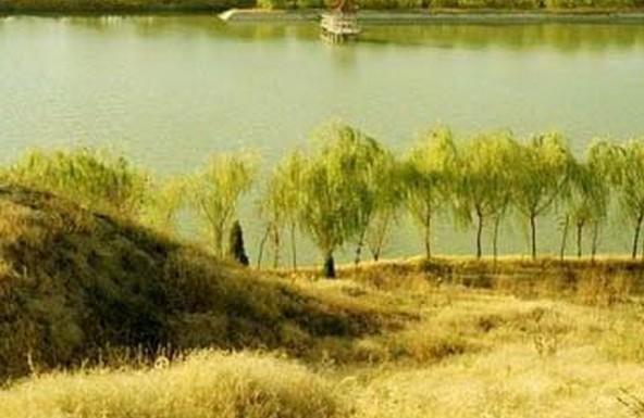 德州禹西生态农业观光园全景