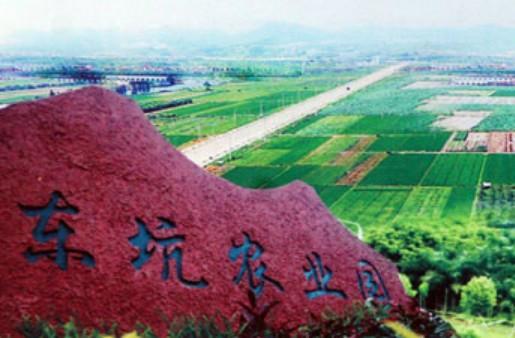 东坑农业园鸟瞰