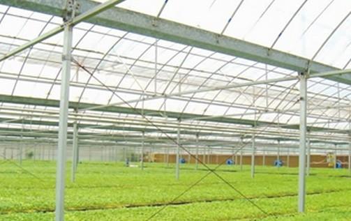 关于加快推进农业现代化建设