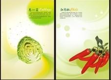 绿色食品白菜和辣椒