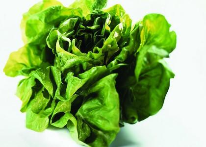 绿色食品大白菜