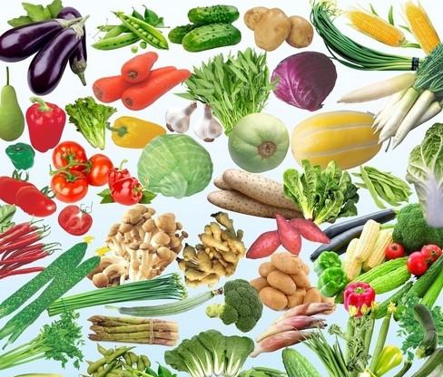 绿色食品的蔬菜合集