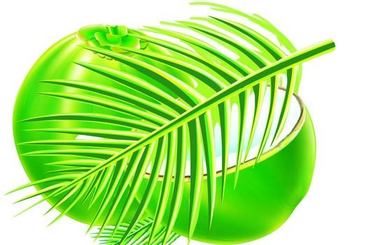 绿色食品的叶子标识