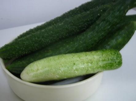绿色食品黄瓜