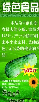 绿色食品巨大的冬瓜