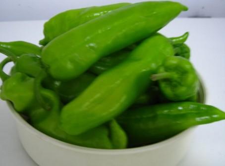 绿色食品青椒