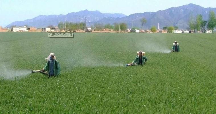 农业稻田施肥