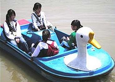 农业观光果园区划船