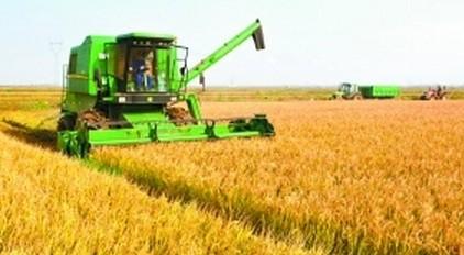 农业机械稻田耕种