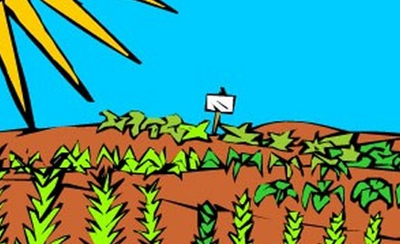 农业机械与庄稼的构造