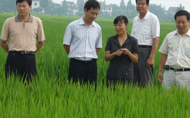 农业视察工作