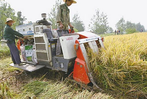 农业收割的过程