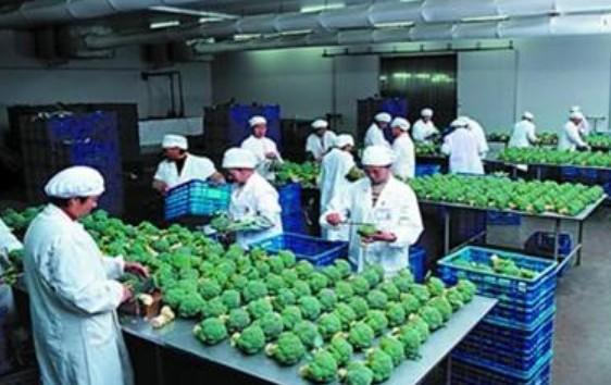 农业种植后成果分析