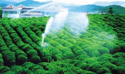 蓬勃发展的江苏现代农业