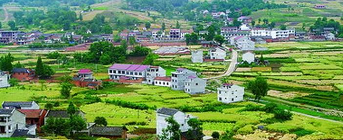 秦岭山的生态农业