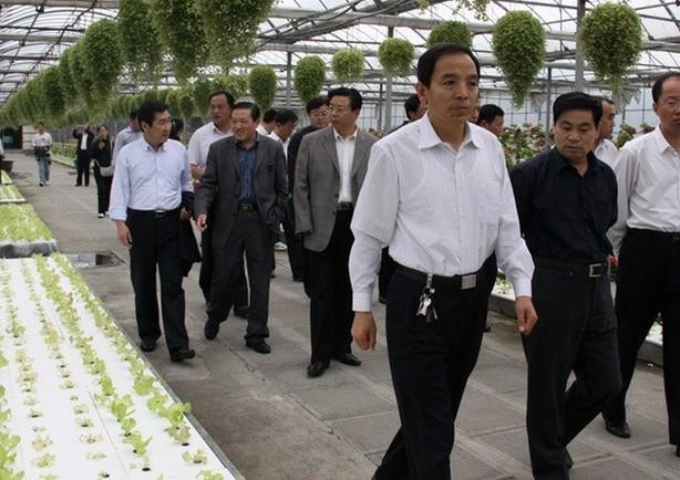 上海农业银行参观情境