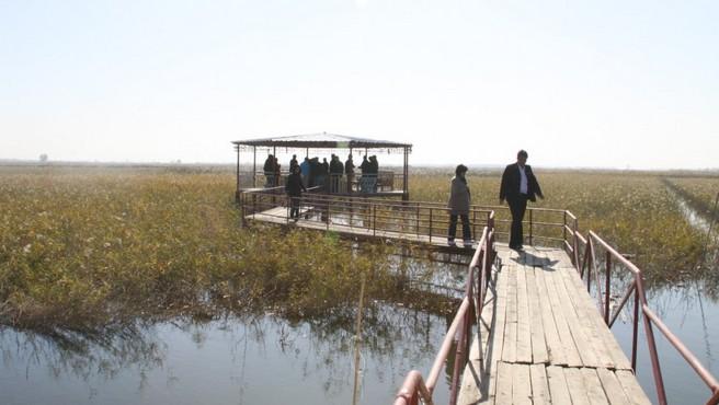 天津特色的生态农业