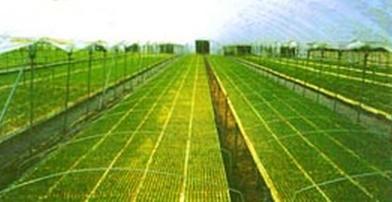 铁岭市农业高新技术园区