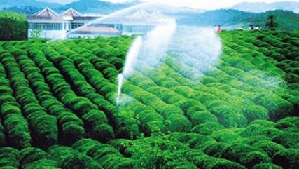 现代化农业建设