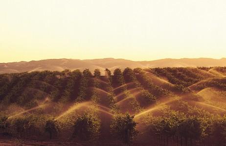 现代化农业种植