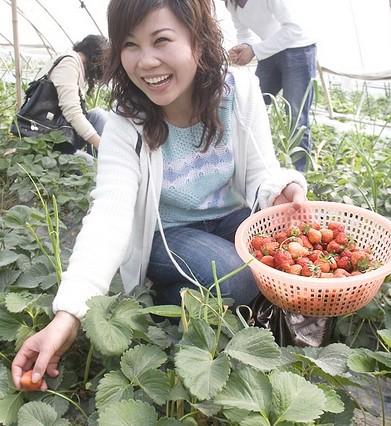 襄樊锦绣园高新农业观光园