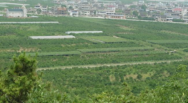 晓塘白玉湾生态农业观光园