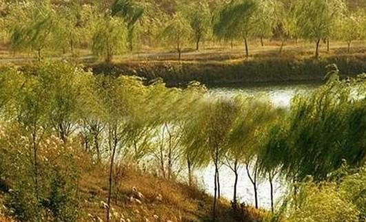 禹西生态农业观光园发展