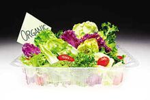肉猪绿色食品生产技术产业