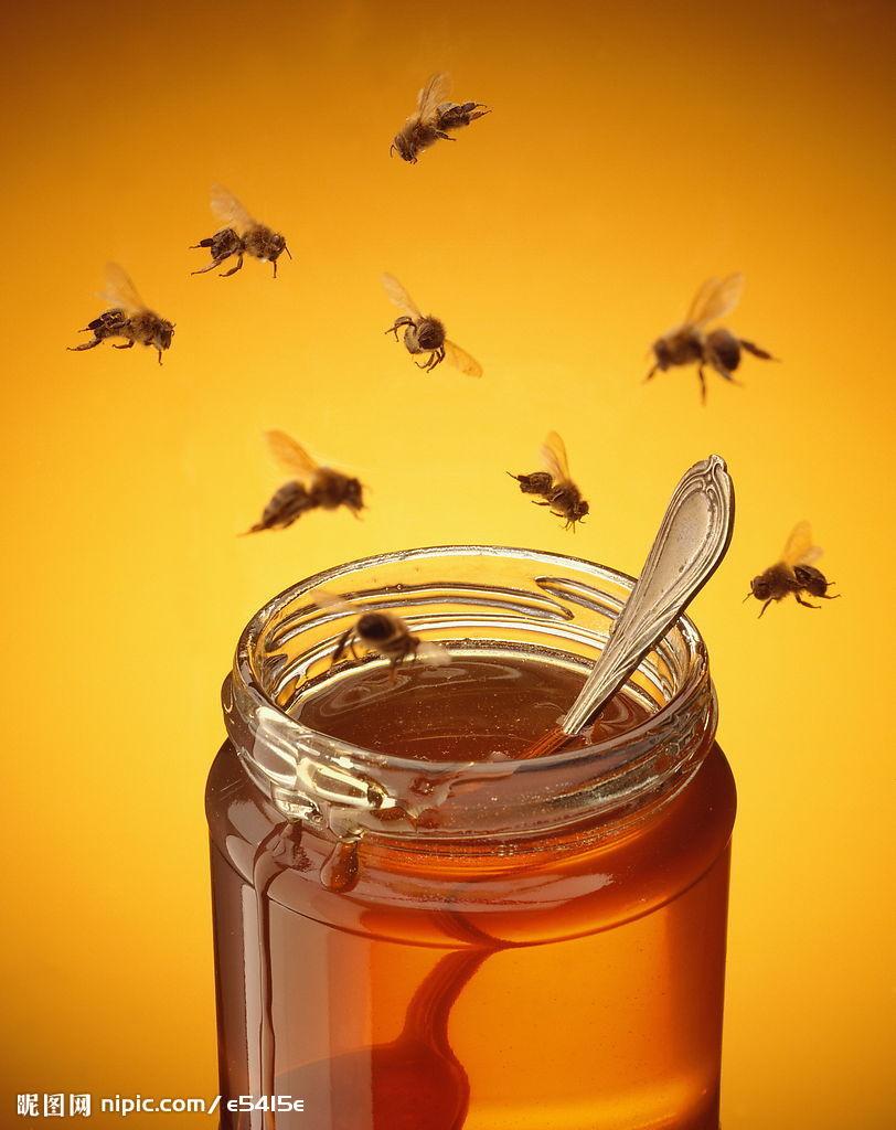 蜂王浆中的氨基酸的种类有多少