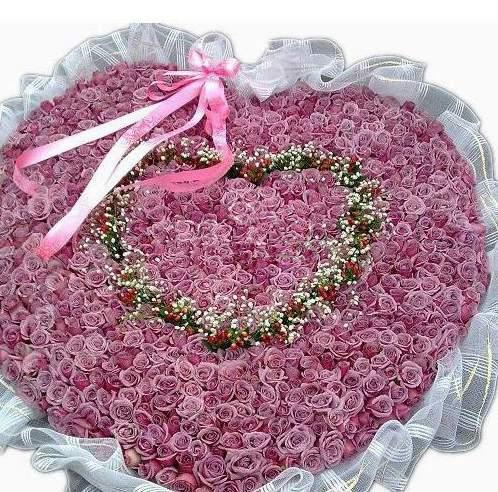 温养人心与香气甜润镇静从容的紫玫瑰