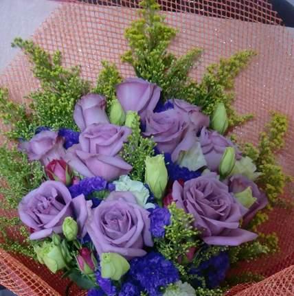 紫玫瑰的神话故事商洛凡与紫水晶的故事