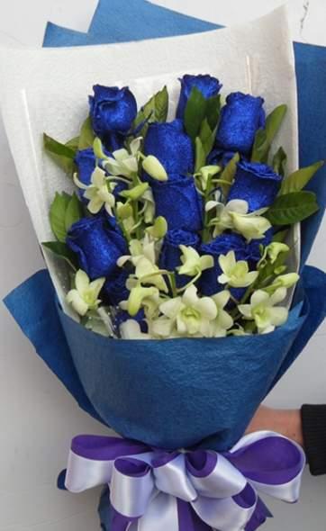 一种转基因的玫瑰品种蓝玫瑰