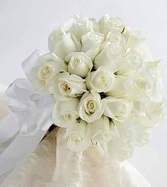 白玫瑰代表什么 你一定不知道这么多
