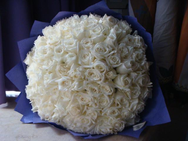 白玫瑰代表什么意思_至诚的情意可用白玫瑰传达
