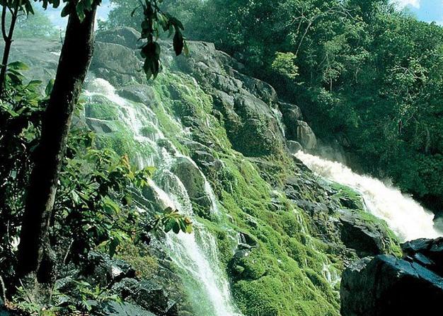 巴西的泉水