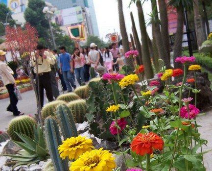 越南的街边