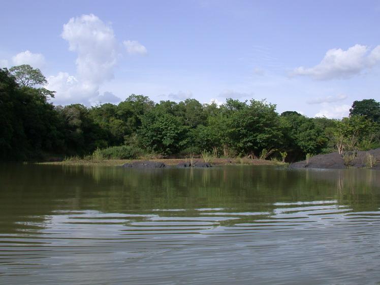 科特迪瓦国家公园科莫埃,西非最大的保护地