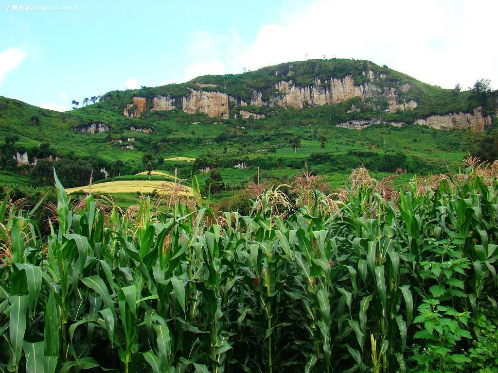 乌干达不可错过的历史景点卡苏比王陵