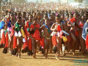 斯威士兰最重要的节日芦苇舞节