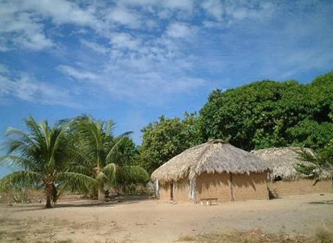 到圭亚那旅游的最佳时间是什么时候