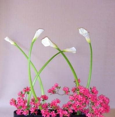 日本插花姿态