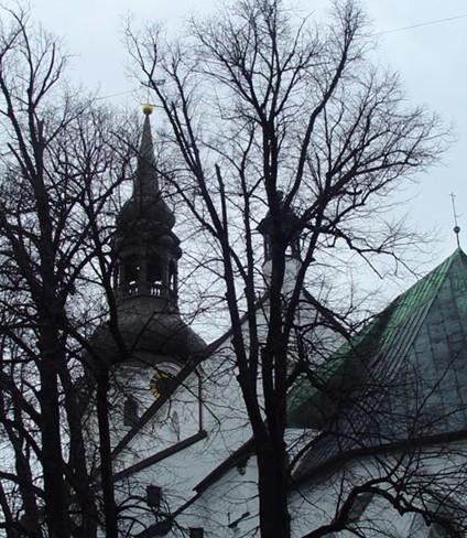 爱沙尼亚战争的悲剧与童话般的城市