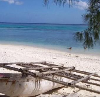 由约80个岛屿组成的国家瓦努阿图