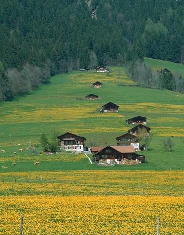 经济最发达和生活水准最高的国家瑞士