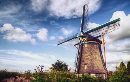 荷兰自第二次世界大战趋向联合的欧洲(一)